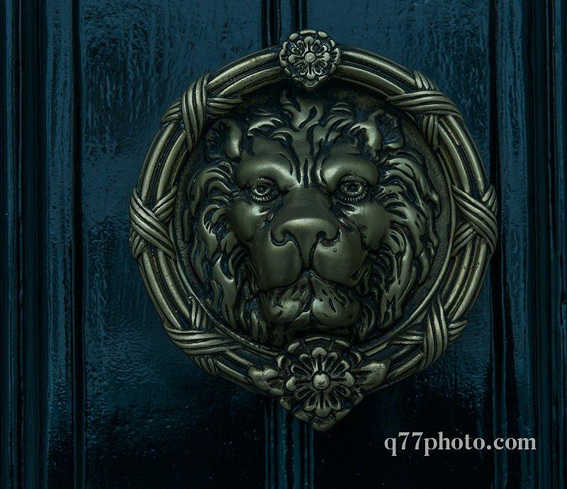 beautiful brass knocker in the shape of a lion's head on a backg